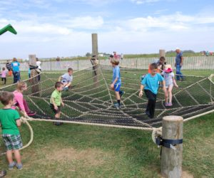 Kids on the spider web