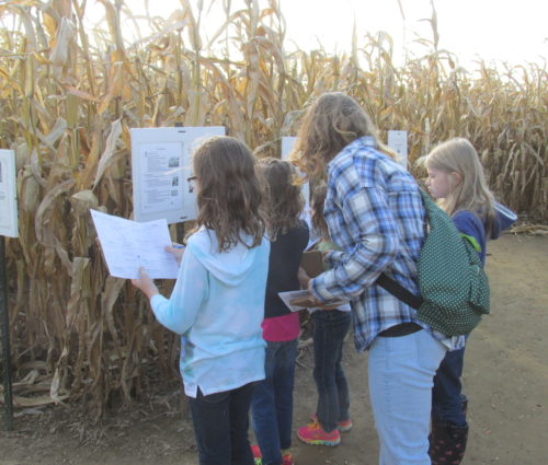 School group learning in Ohio Maze