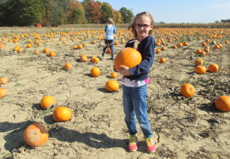 School kid choosing a pumpkin