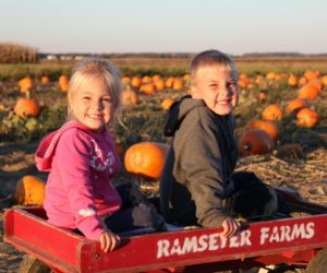 Kids sitting in wagon in pumpkin patch