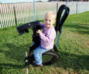 Horse swings